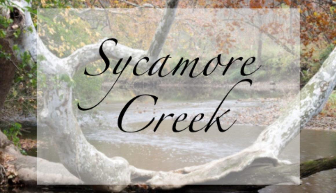 sycamore creek